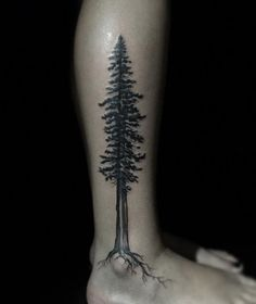 30 Amazing Idea Tree Tattoo That Can Inspire You The Effective Pictures We Offer You About Tattoo Style painting A quality picture can tell you many things. Pine Tattoo, Tree Leg Tattoo, Leg Tattoos, Body Art Tattoos, Tribal Tattoos, Sleeve Tattoos, Geometric Tattoos, Tatoos, Redwood Tattoo