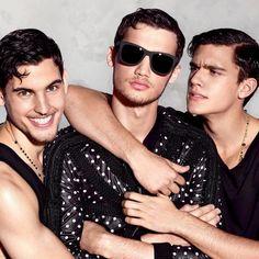 Dolce & Gabbana zonnebrillen | Optiek Lammerant