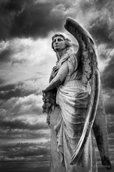 Cemetery Angel Prints - The Sentinel Prints by Olga Zamora Cemetery Angels, Cemetery Statues, Cemetery Art, Statue Tattoo, Angels Among Us, Angels And Demons, Statue Ange, Sculpture Art, Sculptures