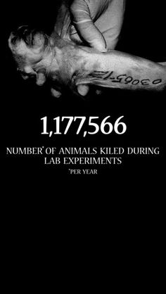 animal experimentation a necessary evil Top five shocking animal experimentation facts web accessed march 3,  animal testing is bad science: point/counterpoint web accessed march 3, 2015 3.