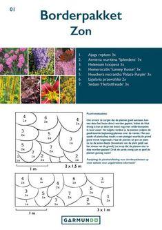 Heuchera, Garden Planning, Garden Plants, Blog, How To Plan, Inspiration, Garden Ideas, Gardening, Dark