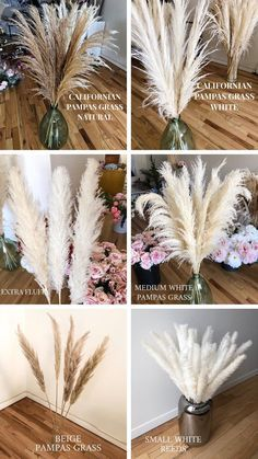 PAMPAS GRASS Small White 25 pcs tall Wedding flower bunch home decor Reed bouquet Dried Flowers Boho plant Rustic Gift Easter Decor Boho Wedding, Fall Wedding, Rustic Wedding, Wedding Flowers, Church Wedding, Wedding Ideas, Bunch Of Flowers, Dried Flowers, Deco Buffet