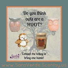 #Scentsy #Owl decor. www.saraverde.scentsy.us