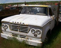 vintage Dodge Trucks