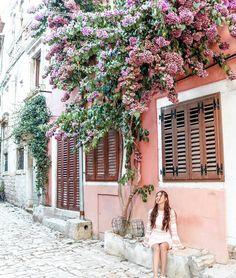 Rovinj in full bloom @takeoffwithlove -  #Croatia  #beautifuldestinations #travelblogger #girlswhotravel #lovenature #lovetravel #rovinj #flowers #architecture