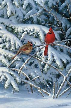 """Bramble Buddies-Cardinals"" - by Marc Hanson"