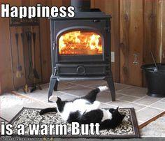 Happiness is a warm butt! It's true!