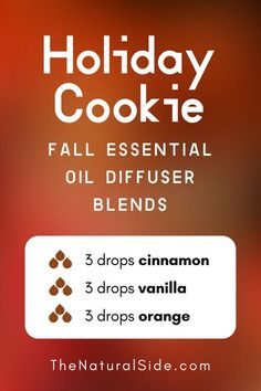 11 Fall Essential Oil Diffuser Blends to Warm Your Home Up 11 Fall Essential Oil Diffuser Blends to Warm Your Home Up Holiday Cookie 3 drops Cinnamon 3 drops Vanilla Fall Essential Oils, Cinnamon Essential Oil, Vanilla Essential Oil, Essential Oil Diffuser Blends, Essential Oil Uses, Vanilla Oil, Oils For Energy, Essential Oil Combinations, Diffuser Recipes
