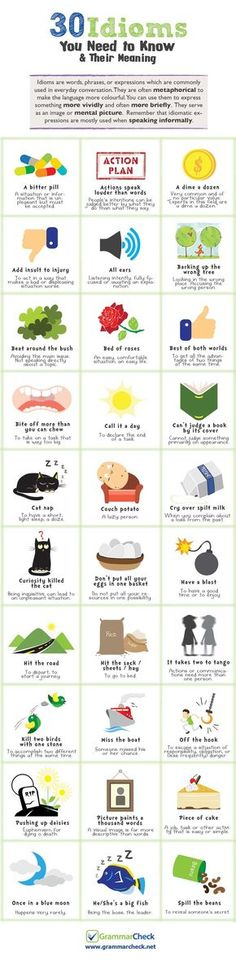 Educational infographic : 30 Idioms You Need to Know & Their Meaning (Infographic)