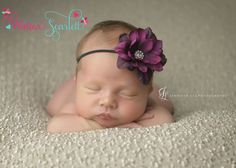 Baby Headbands.. Dainty Purple Flower by WinterScarlett on Etsy, $5.99