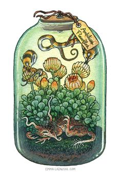 Bottled: Sleepy Flower and Bumble Pipwyrms by emmalazauski on DeviantArt Mythical Creatures Art, Fantasy Creatures, Creature Concept, Bottle Art, Creature Design, Cool Drawings, Dungeons And Dragons, Cute Art, Art Inspo