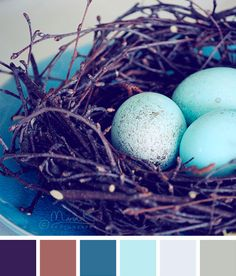 Lovely blue color inspiration.