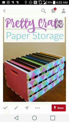 Vinyl and scrapbook storage
