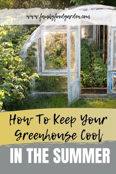 Greenhouses just get hotter and hotter in the summer unless we make an effort to cool them down. Here are some tips and tricks on how to keep your greenhouse cool in the summer. #garden #gardeningtips #homestead #homesteadingtips #plantcaretips #greenhouse #summergardening #summer Large Greenhouse, Greenhouse Gardening, Gardening Tips, Texas Gardening, Greenhouse Ideas, Flower Gardening, Vertical Vegetable Gardens, Indoor Vegetable Gardening, Container Gardening