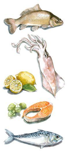 Food illustrations made for supermarket: