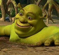 Ideas for memes plantillas shrek New Memes, Dankest Memes, Funny Memes, Memes Shrek, Shrek Funny, Reaction Pictures, Funny Pictures, Memes Lindos, Funny Tattoos