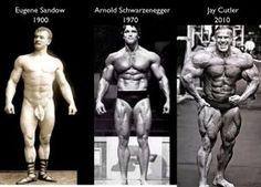 bodybuilder shapes over time
