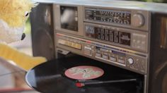 Flat Eric puts a record on. Free Music Archive, Jukebox, Geek Stuff, Flat, Musicians, Music, Life, Geek Things