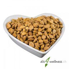 Bittere Aprikosenkerne, Amygdalin, Vitamin B12. Vitamin B17, Dog Food Recipes, Wellness, Vitamins, Bitterness, Animal Food, Homemade, Food Food