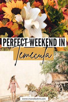 Visit California, California Travel, Temecula California, Southern California, Girls Weekend, Summer Girls, Amazing Destinations, Travel Destinations, Usa Travel Map