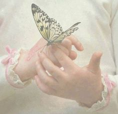 May the wings of the butterfly kiss the sun And find your shoulder to light on, To bring you luck, happiness and riches Today, tomorrow and beyond. ~~ Irish Blessing ~~ ♥ X ღɱɧღ