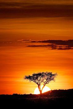 Kenya by Scott Grubb