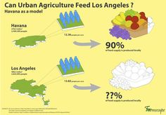 Can urban Agriculture Feed Los Angeles?