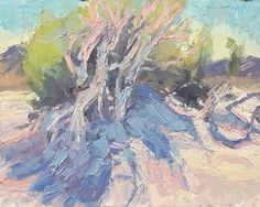 Windswept Tree at Tecolote.  I keep going back and forth between thick and thin paint. This small colour study is very thick. I know for certain that I wasnt happy with the smoothing out of the edges and strokes after a couple days in my past few paintings. So Im experimenting with a thicker formula in my lead white paint making process. Well see how the brush strokes hold up after a few days... Thick And Thin, Color Studies, Keep Going, Brush Strokes, White Paints, Study, Paintings, Couple, Studio