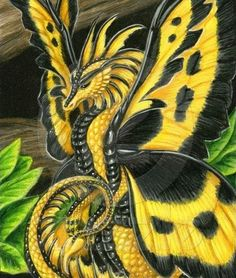 Yellow Dragon butterfly #Fantasy #Creatures #Monsters