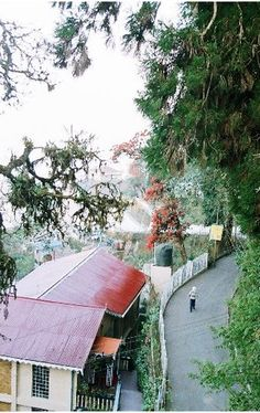 Darjeeling, Largest Countries, Nightingale, Travel Memories, Incredible India, Places Ive Been, Journey, Inspire, The Incredibles