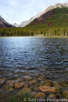 Banff National Park, Alberta, Canada, Photo by Terri Giles-damn gurlfreeeeeen is talented :)