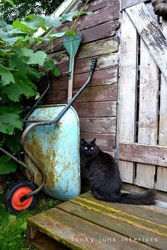 1000 images about great junk on pinterest funky junk for Funky garden accessories