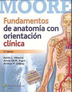 Fundamentos de anatomía : con orientación clínica : 5ª edición / Keith L. Moore, Anne M.R. Agur, Arthur F. Dalley Topogràfic: 611 MOO #novetatsCRAIUBMedicina