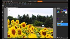 Using Magic Fill in PaintShop Pro X7.  Learn how to erase something in photo to make it better.  Check out their link.