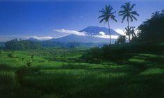 Pegunungan adalah jejeran atau rangkaian gunung-gunung yang berderet  yang lebih tinggi dibanding tempat sekitarnya.