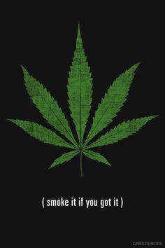 Smoke It If You Got It Marijuana Poster – Pointless Posters Marijuana Leaves, Marijuana Plants, Medical Marijuana, Marijuana Funny, Weed Posters, Weed, Clown Tattoo, Herbs, Backgrounds