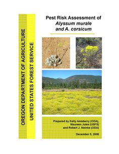 Pest risk assessment of Alyssum murale and A. corsicum, by the Oregon State Department of Agriculture