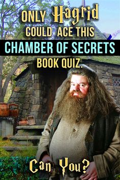 F*** yeah i got 100 percent!A quiz on on the Chamber of Secrets! See how much you remember from this magical sequel to the Harry Potter series! Snape Harry Potter, Harry Potter Quiz, Harry Potter Cosplay, Harry Potter Theme, Harry Potter World, Harry Potter Characters, Harry Potter Workout, Severus Snape, Draco Malfoy