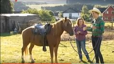 12oaksTV-Webwalk #2 - Wellendorf (WDR Lokalzeit) besucht unsere Ranch