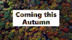 Manchester Courses Autumn 2019 Training Courses, Birmingham, Liverpool, Manchester, Autumn, Nottingham, Durham, Camera Phone, Bristol