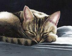 Великие картины кошек Силии Пайк (20 фото)