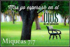 Mas yo esperaré en el Dios de mi salvación.  Mq 7.7