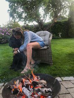 #Summer #dog #blue #fire #garden #tommyhilfiger Summer Dog, Tommy Hilfiger, Fire, Garden, Outdoor Decor, Inspiration, Home Decor, Biblical Inspiration, Garten