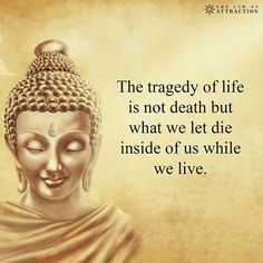 Buddhism and meaningful quotes by Buddha Buddhist Quotes, Spiritual Quotes, Positive Quotes, Spiritual Coach, Spiritual Health, Mental Health, Motivacional Quotes, Wisdom Quotes, Beau Message