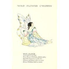 Wild Flower Children c1918 Twin Flower Canvas Art - Janet Laura Scott (18 x 24)