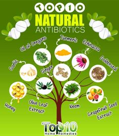 Antibiotics are medicine used to treat and prevent bacterial infections. When used properly, they can either kill or inhibit the growth of bacteria that cause problems like ear infections, stomach problems and several skin issues. Different types of antibiotics work against different types of bacteria and some type of parasites. Doctors prescribe an antibiotic depending …