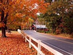 Vermont in the fall...I can't even explain to you how badly I want to live here