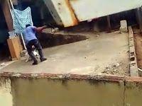 """""""O GRITO DO BICHO"""": Homem é detido após agredir cães com chicotadas - ..."""