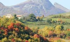 Italy in autumn - Google Search