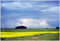 The prairies - Manitoba